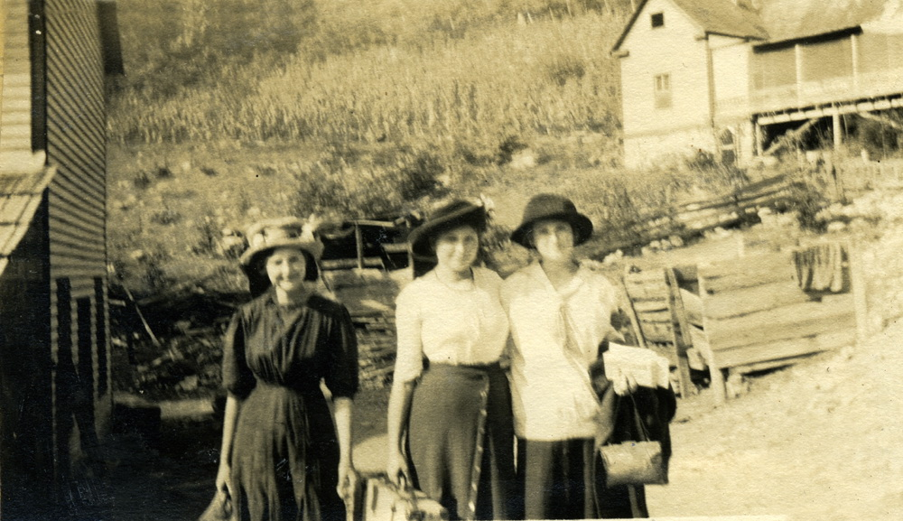 NOLAN FAMILY - PINE MOUNTAIN SETTLEMENT SCHOOL COLLECTIONS