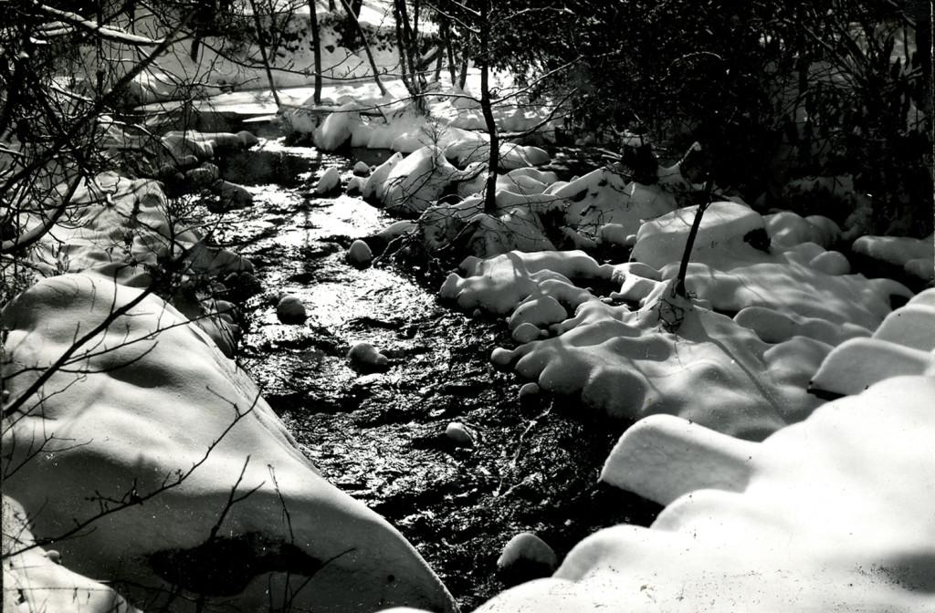 [Isaac's Creek?]   nace_1_078a.jpg