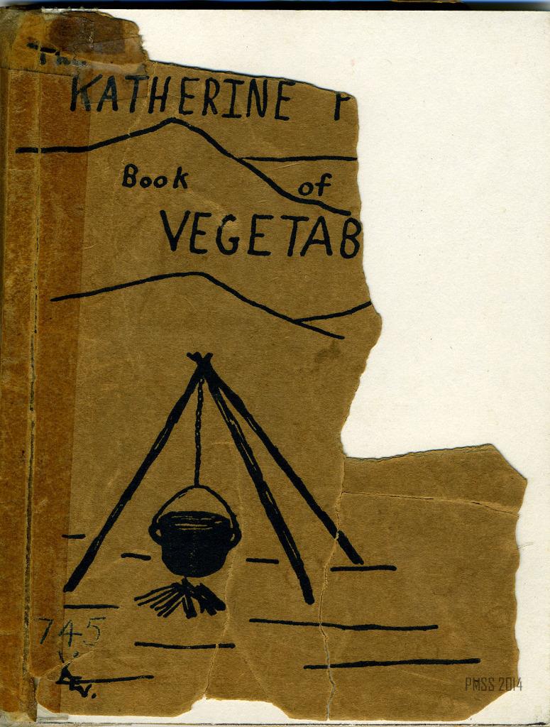Katherine Pettit Dye Book