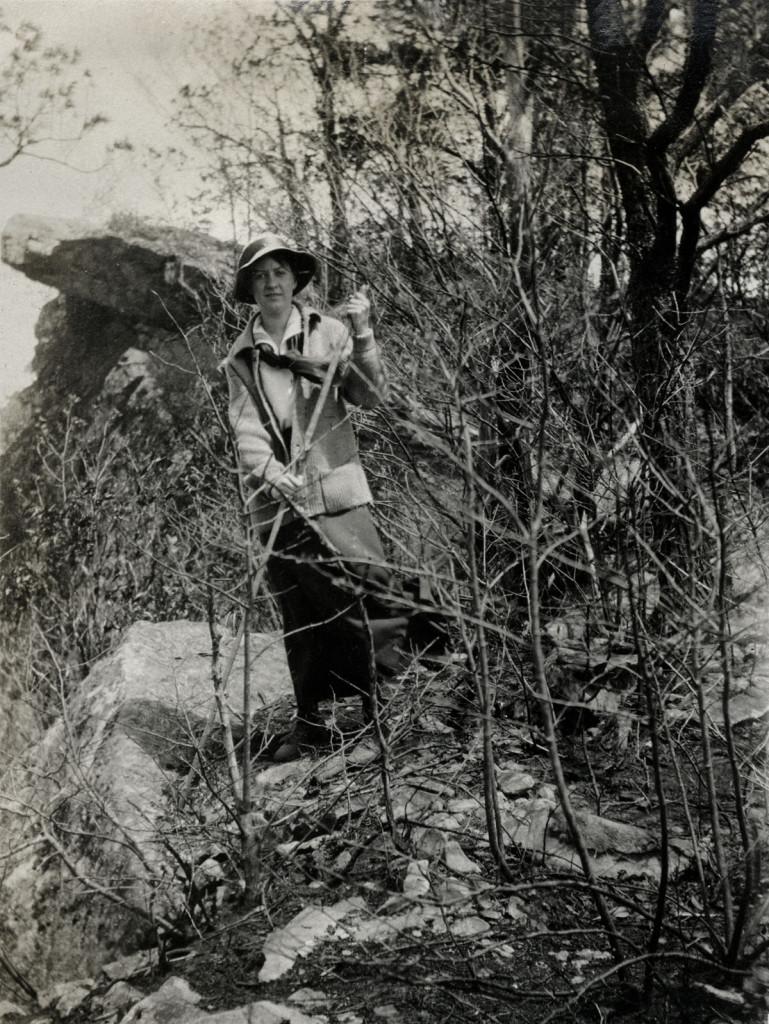 Little Shepherd Trail, Jack's Gap