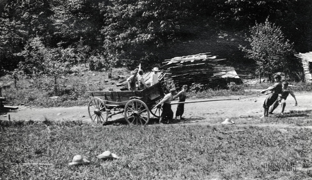 Sawmill. Hauling cut lumber from the mill to stack for drying, c. 1913-14 roe_028a.jpg