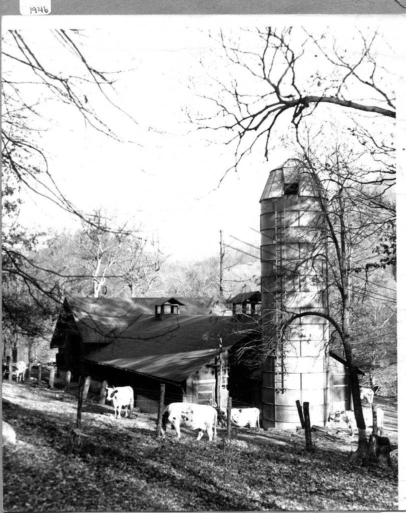photo of barn, silo, and grazing cows.