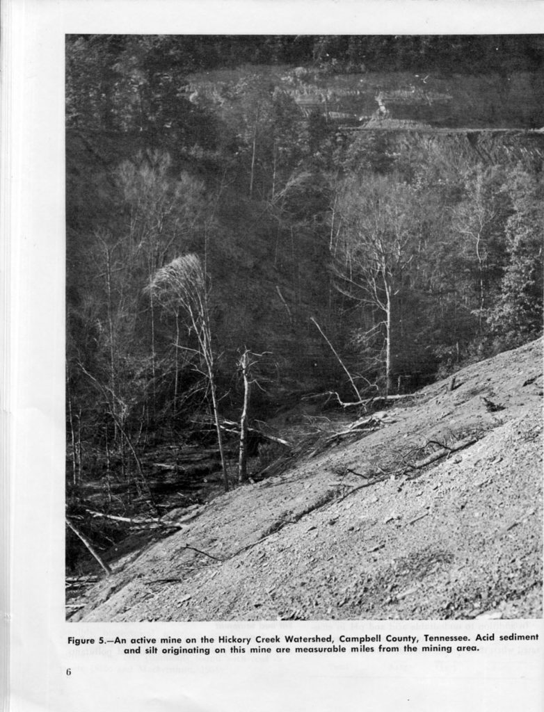page 6 Effects of Surface Mining on Fish and Wildlife in Appalachia