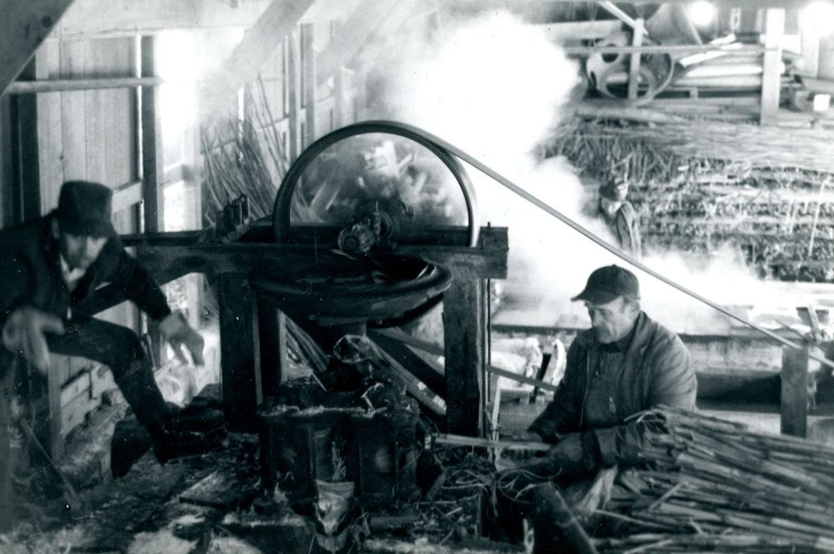 064 VII PHOTOGRAPHS LW  Maintenance Farm Grounds Singles